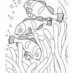 Ausmalbild-Fische