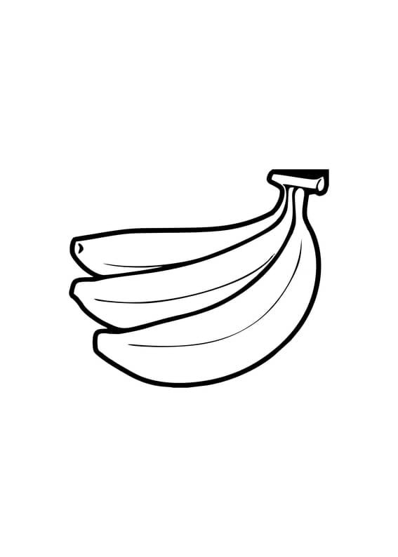 Ausmalbild Obst Und Gemüse Spielplatz Scout