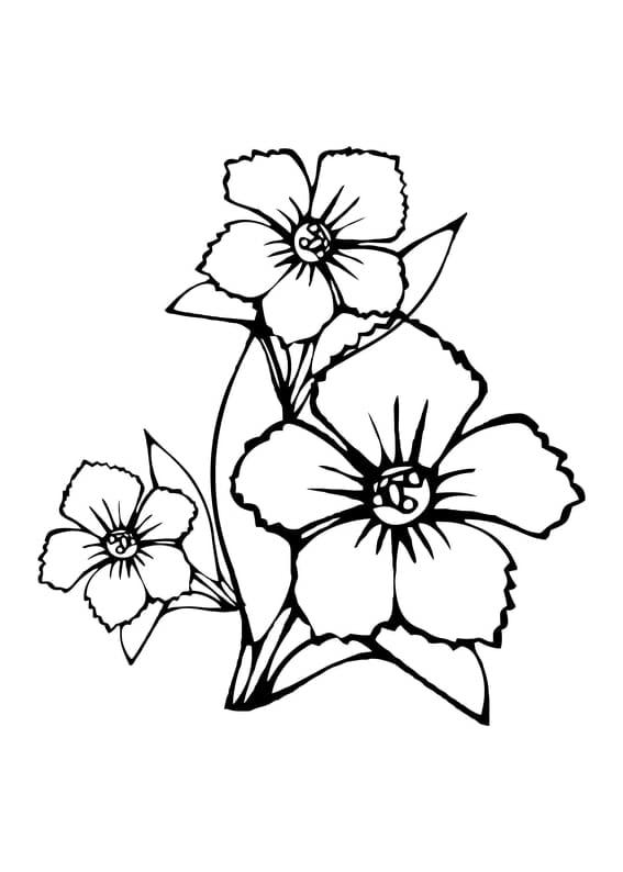 Ausmalbild Blumen Spielplatz Scout